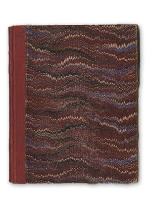 1916-1918 Diary