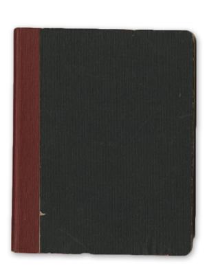 1918-1921 Diary